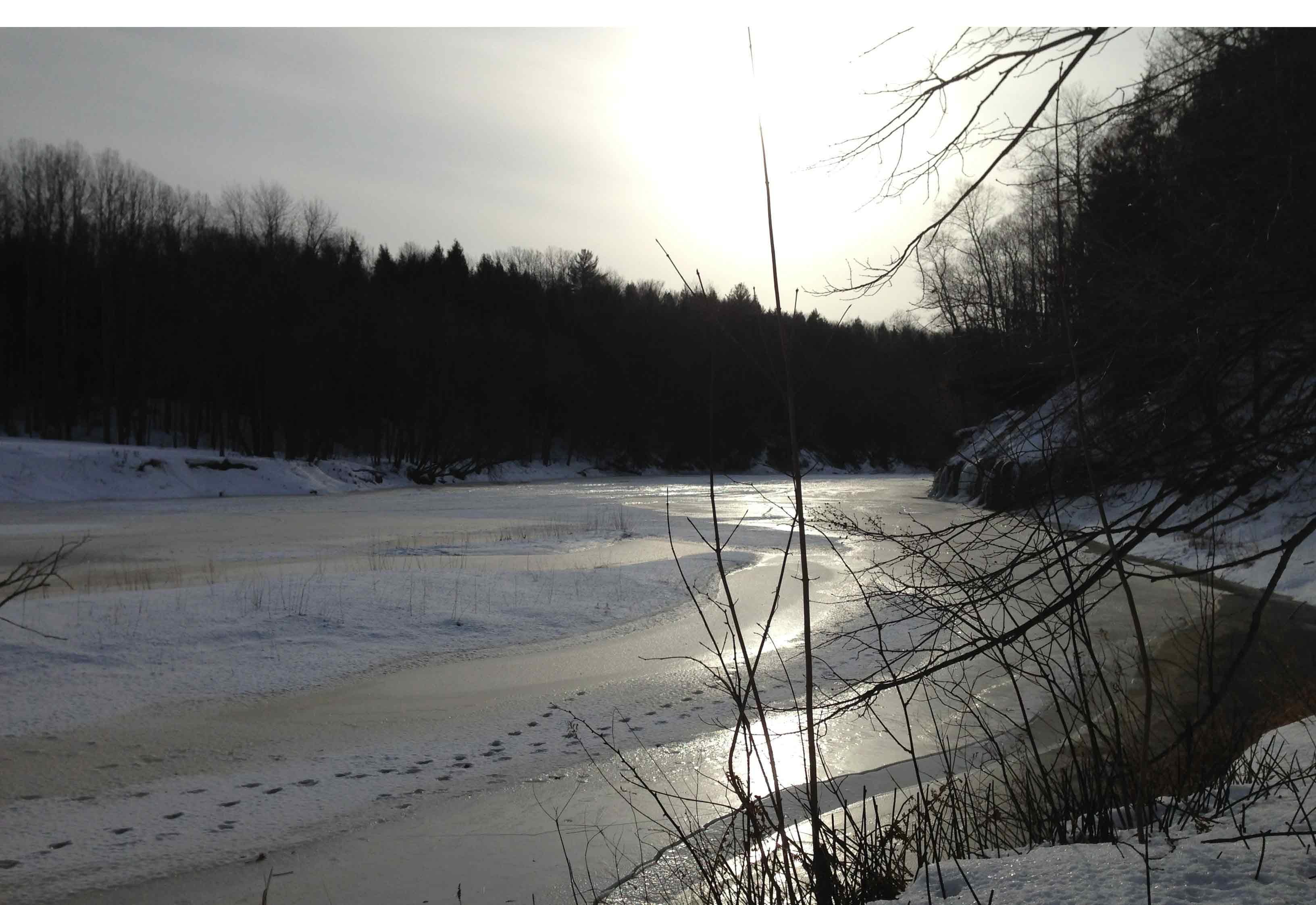 La rivière du Chêne